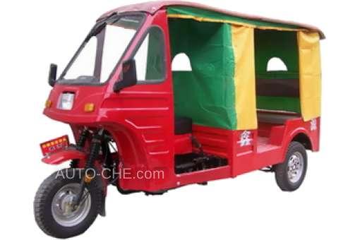 Auto Rickshaw Trike