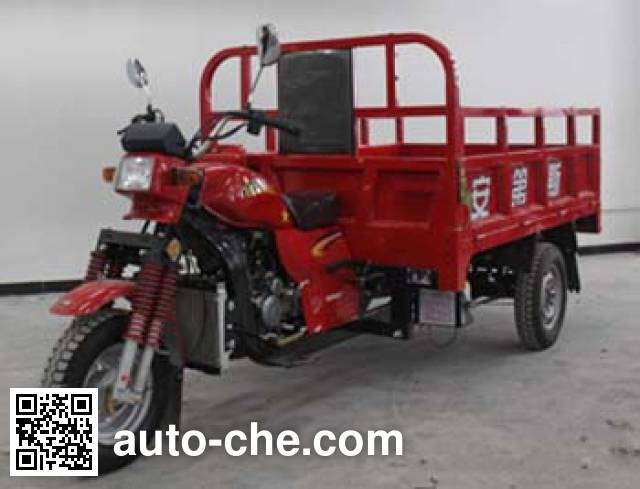 Andes cargo moto three-wheeler AD200ZH-7