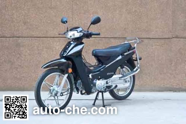 Dafeier underbone motorcycle DFE110-6A