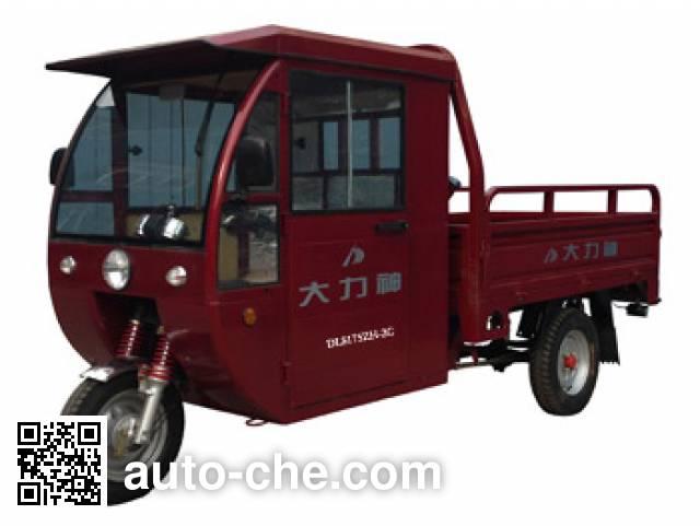 Dalishen cab cargo moto three-wheeler DLS175ZH-2C