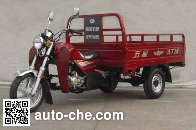 Foton Wuxing cargo moto three-wheeler FT175ZH-6A