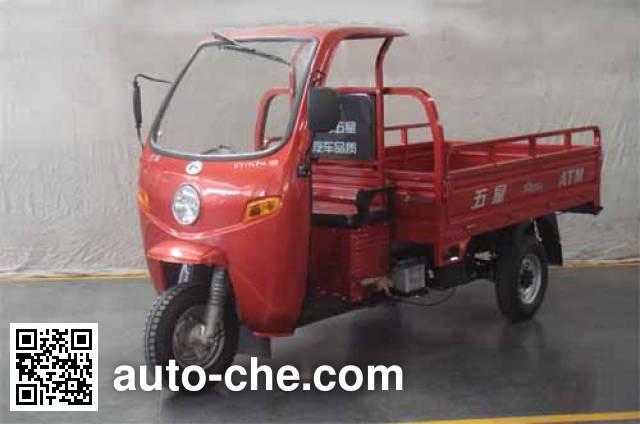 Foton Wuxing cab cargo moto three-wheeler FT175ZH-9B