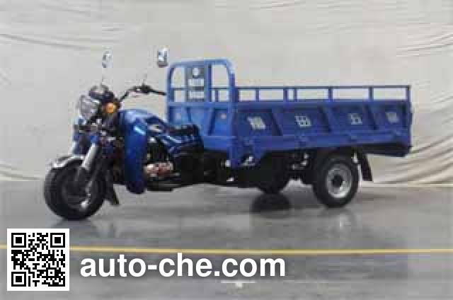Foton Wuxing cargo moto three-wheeler FT250ZH-11E