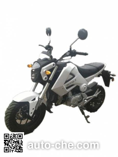 Pengcheng motorcycle PC110-3