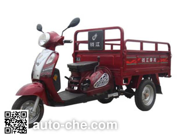 Qjiang cargo moto three-wheeler QJ110ZH-C
