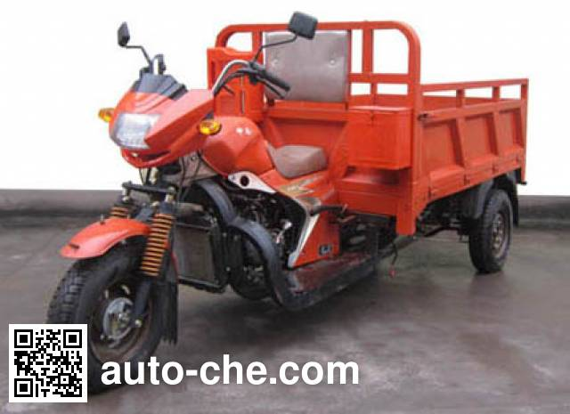 Shenlun cargo moto three-wheeler SL250ZH