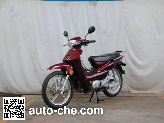 Dongli underbone motorcycle TN110-C