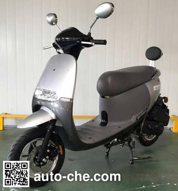 Wanglong scooter WL100T-9