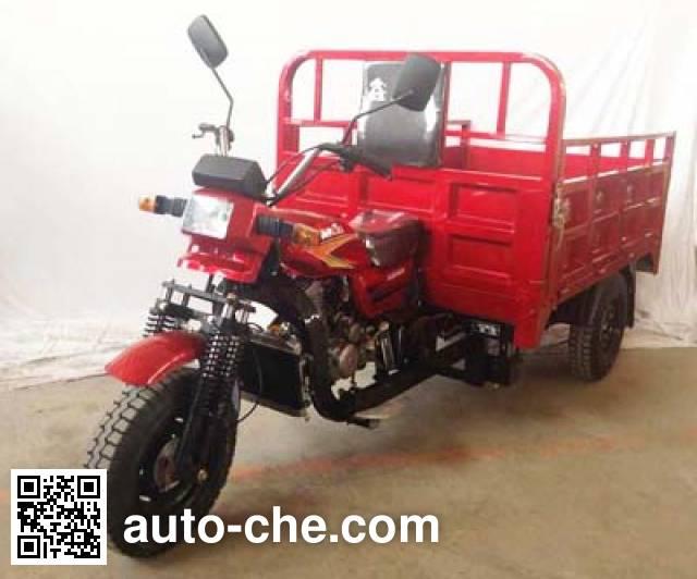 Xinliba cargo moto three-wheeler XLB250ZH