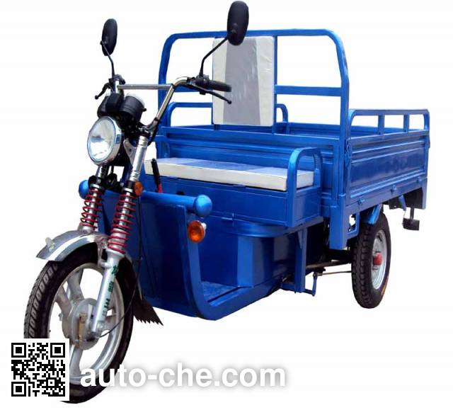 Fuxinyang electric cargo moto three-wheeler XY3000DZH-A