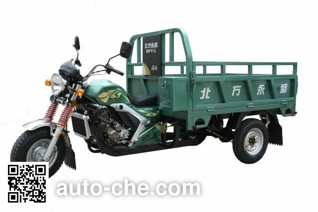 Yuyongsheng cargo moto three-wheeler YYS175ZH