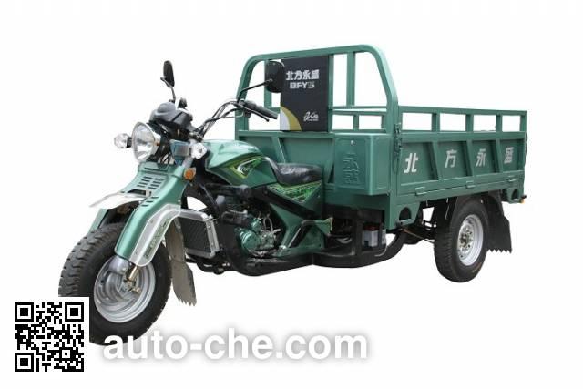 Yuyongsheng cargo moto three-wheeler YYS250ZH