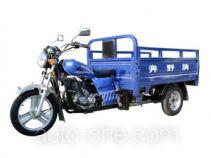 Benye cargo moto three-wheeler BY150ZH