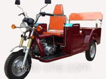 Dalishen auto rickshaw tricycle DLS110ZK-C