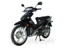 Dayang underbone motorcycle DY110-52
