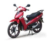 Dayang underbone motorcycle DY110-8
