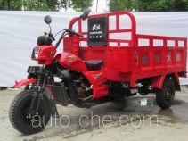 Dayang cargo moto three-wheeler DY250ZH-7A