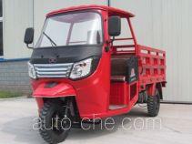 Dayang cab cargo moto three-wheeler DY250ZH-9