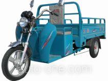 Electric cargo moto three-wheeler Dayun