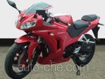 HiSUN motorcycle HS250GS-3