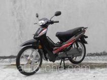 Jincheng 50cc underbone motorcycle JC48Q-A