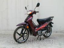 Jincheng 50cc underbone motorcycle JC48Q-V
