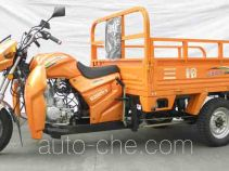 SanLG cargo moto three-wheeler SL200ZH-9