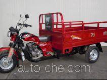 Wanhoo cargo moto three-wheeler WH250ZH-2A