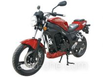 Shineray motorcycle XY250-5C